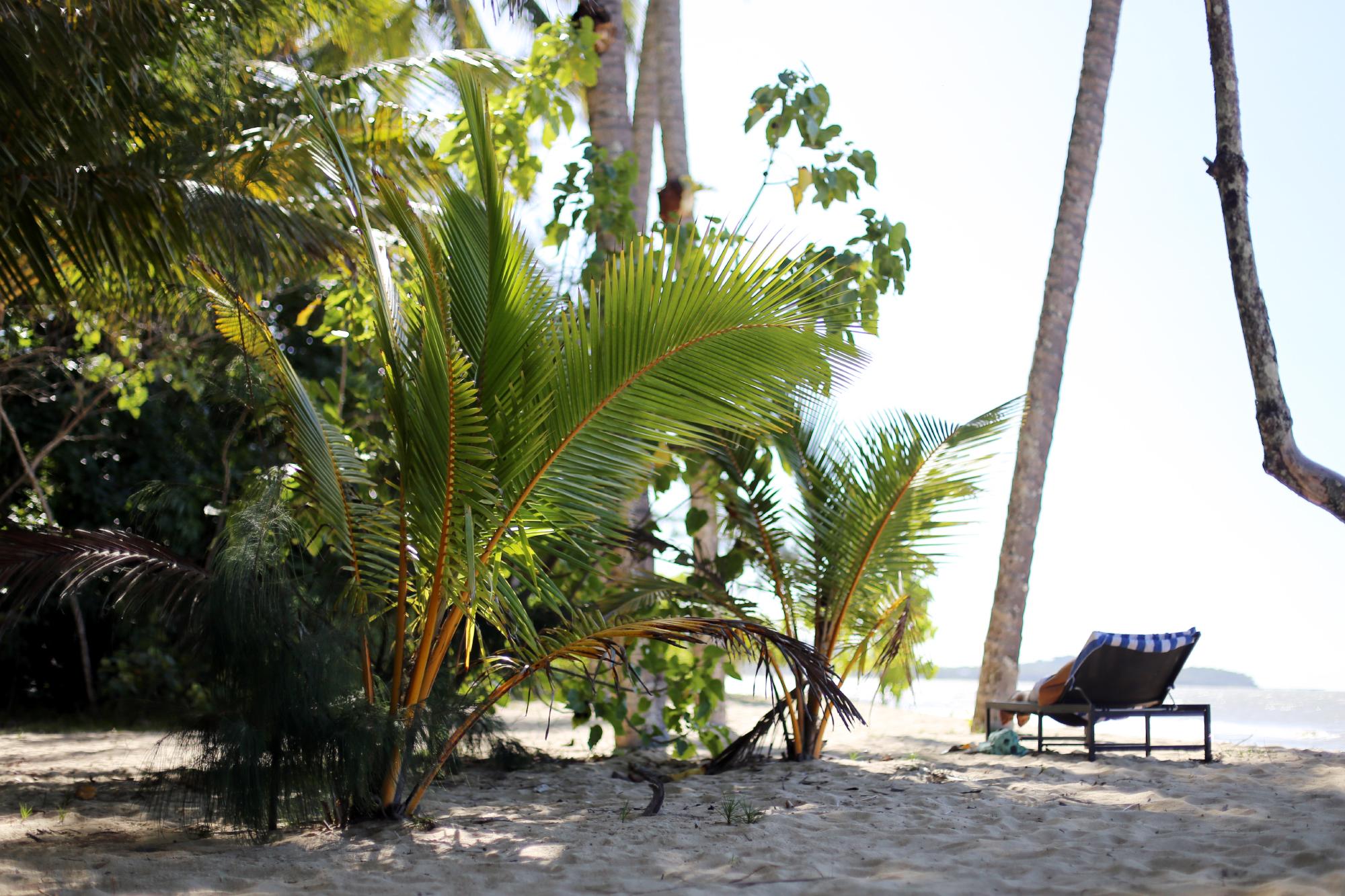kewarra beach dag ett 12