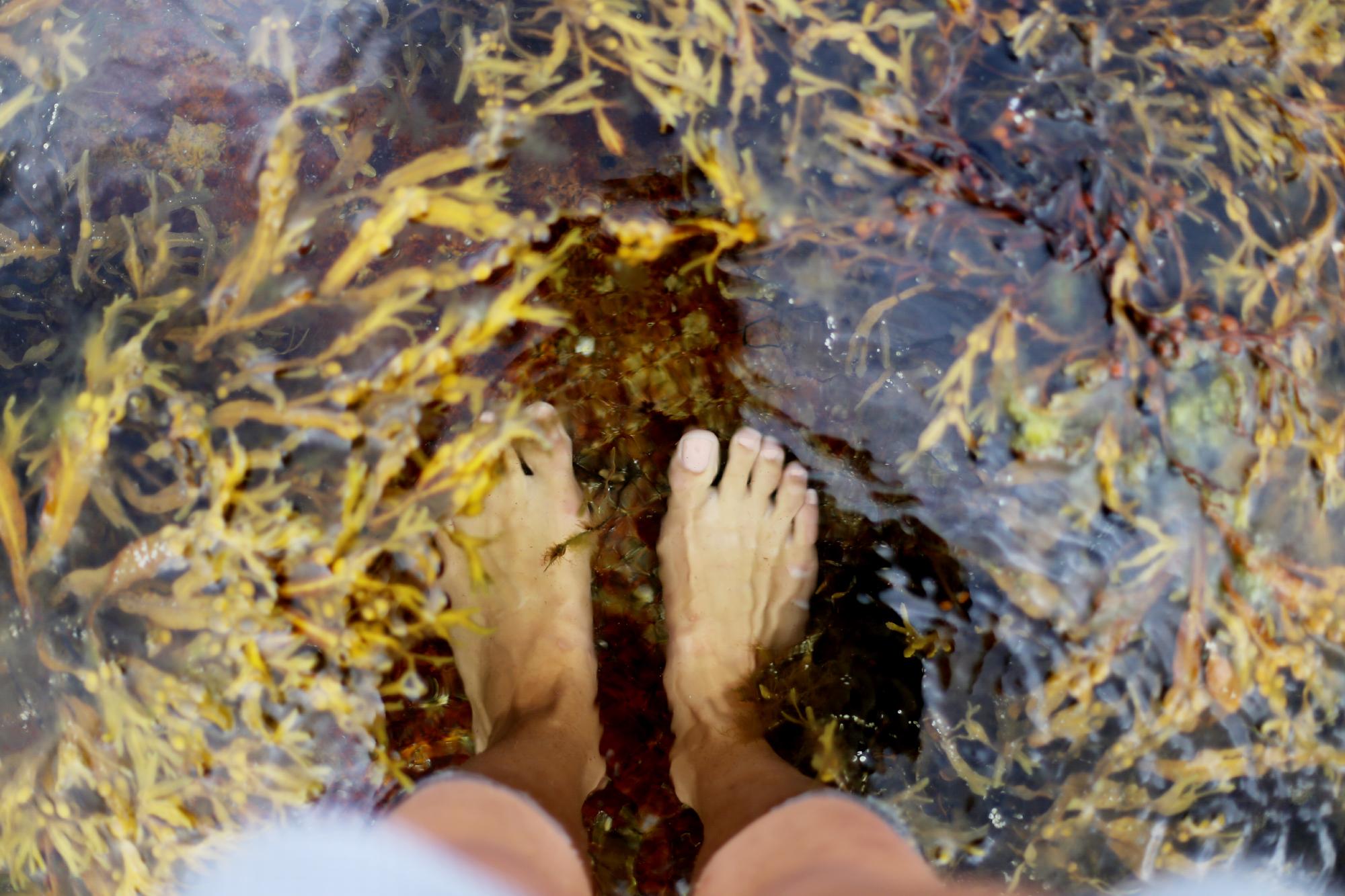 torsdag vid tjurpannans naturreservat14