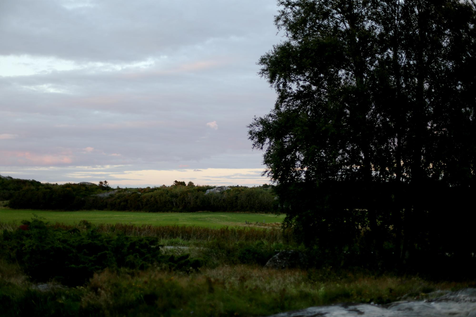 torsdag vid tjurpannans naturreservat40