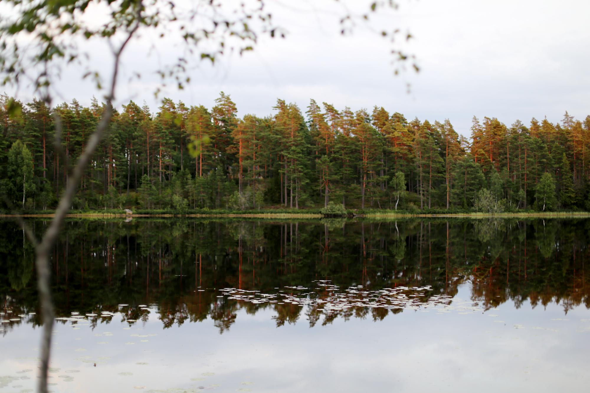 i målerås med johan-sara edström19
